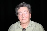 Věra Nádeníčková, současná fotografie