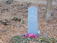 Válečný hrob u Hraniček, kde 7. května 1945 zastřelili Otto Krejčího a Františka Švece