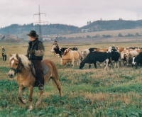 Almost like in the Wild West - Jiří on the horse in front, Pavel on the back (year 2000)