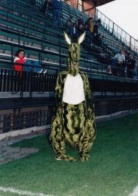 A kangaroo at the Bohemians Stadium, where Josef Jelínek worked as an administrator, after 1989,