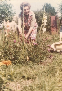 Úherce at the most beautiful time of my childhood when dad tried to rebuild and repair our house and finish the work in the yard and in the cottage at the lower end. My mother loved her gladioli she grew in the garden. At the back of teh garden, there is an iron slide and a giant swing dad had made, along with smaller attractions, for his first two children. Subsequently, three generations of children, nowadays already elderly, because there was no playground in the village and everyone used to meet in our place until I grew up. Even when I was twenty-five, I used to swing on the large swing until mom decided that it needs to be taken down because it was falling apart and someone could get killed.