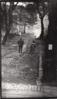 Jaklovec colony in Slezská Ostravě. Picture by Daniel Balabán - mid 1970s