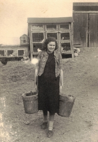 Her mother totally engaged in agriculture, Hleďsebe 1942