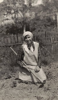 Her grandmother Rela works in the garden, Hleďsebe, 1958