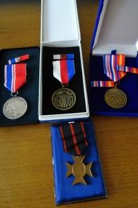 Ukázka medailí, které dostala J. Straková v posledních letech