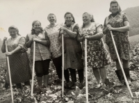 Witness Paulína Dubeňová at work in the field (third from the right)
