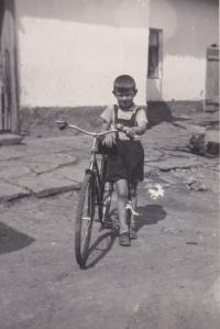 Václav Tuček (*1946)
