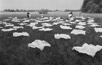 Akce Zorky Ságlové Kladení plín u Sudoměře, květen 1970