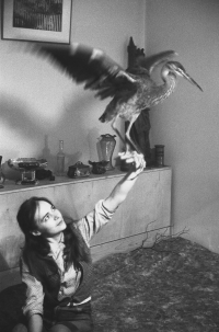 Věra Jirousová and a heron which she found wounded and saved, second half of the 1960s