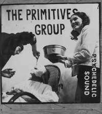 The Primitives Group poster