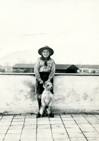 Vladimír Munk ve skautském kroji se svým psem Cigim před válkou