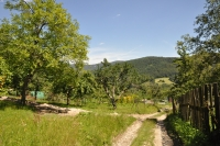 The road from Horna Stredna to Dolna Stredna