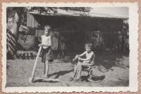 Roman and Petro Hamik, 1950s