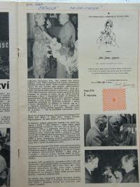 Newspaper article, Florence Nightingale award
