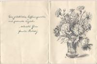 Dopis J.J.Pály do koncentračního tábora