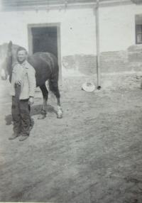 Hugo Drásal at Hrutka Farm in Lhota in 1947