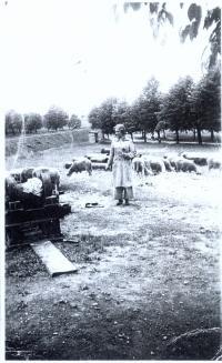 Doris Grozdanovicova in 1942 in Tereztin