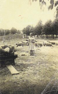 Doris as sheperd in Terezín, 1943