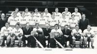 Jan Havel, 1st on the right side on top, National team, 1971, Bern/Geneva, World Eishockey Championship