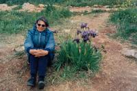 Hana Drori 1995