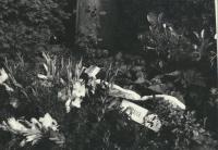 The funeral of J. Kuliš