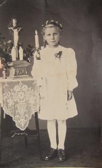 His wife Marie Brixová (Kirchner)