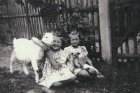 the twins, a goat and a dog