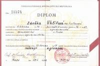 university diploma 1961