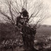 1955 - brigade in Suš (Zdena on the willow tree)