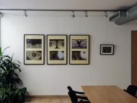 Galerie v DNM