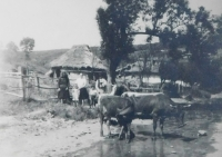 Village in Death Valley at the Dukla Pass in 1946