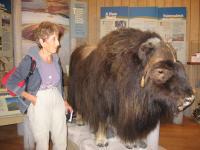 Marketa in the Museum Inuit Northwest Territories, 2009