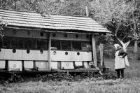 Matka u včelínů na Drozdovské Pile postavených z beden které v kraji zanechala vojska wehrmachtu