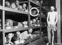 Naftali Fürst on famous photo of Buchenwald after liberation