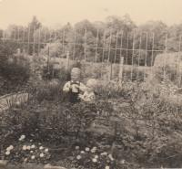 In the garden in Lysa nad Labem, by the house of Dohalsky