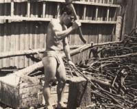 Při práci doma, rok 1957