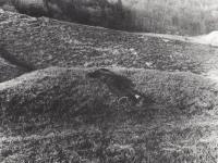 Cítěn čerstvou trávou, 1976