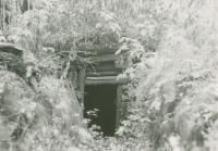 The remains of the partisan shelter where Mikuláš was hiding. About 1946