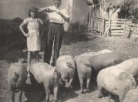 Mira and Franja Poznik with piglets