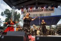 Bożena Paczkowska at the Roma Festival in Wroclaw