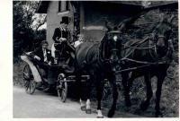 Svat. Bajer as a coachman