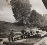 Josef Hocz at work at the sawmill in Jeseník