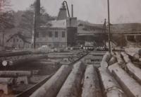 The sawmill in Jeseník, where Josef Hocz worked