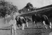 Zdenka Vévodová in the fields (1942)