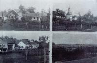 Borovník